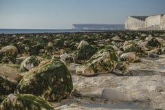 Sept soeurs, East Sussex, Angleterre ; plage blanche, algues vertes photo libre de droits