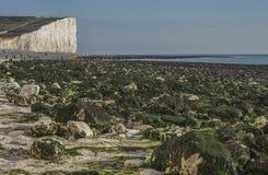Sept soeurs, East Sussex, Angleterre, R-U ; plage blanche, cieux bleus et algues vertes image stock