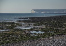 Sept soeurs, East Sussex, Angleterre ; une vue d'une plage verte photos libres de droits