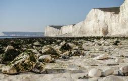 Sept soeurs, East Sussex ; plage blanche, algues vertes sur la plage image stock