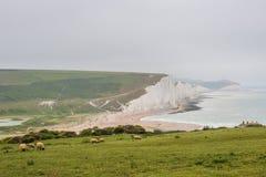 Sept soeurs marquent des falaises à la craie le Sussex est Angleterre R-U image libre de droits