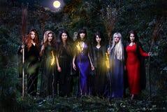 Sept sorcières dans la forêt de nuit Image stock