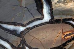 Septarian Geode Royalty Free Stock Image