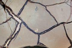 Septarian Geode Stock Photos