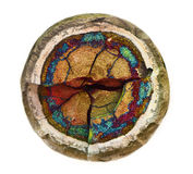 Septarian Stock Photos