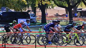 Cyclo-Cross Cyclists in action