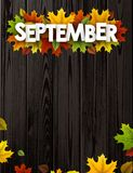 September background with colorful leaves. Stock Photo