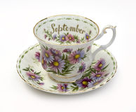September Cup and Saucer Royalty Free Stock Images