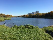 Indian Summer. City lake in the park. stock images