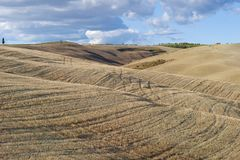 September in the fields of Tuscany. Italy. September in the fields of Tuscany, Italy Stock Photo