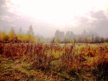 September  landscape Royalty Free Stock Photography