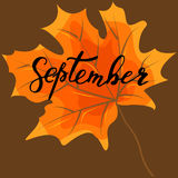 September, hand lettering, quotes.Modern motivation calligraphy, Royalty Free Stock Image