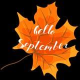 September hello, hand het van letters voorzien, citaten Moderne motivatie Royalty-vrije Stock Foto