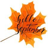 September hello, hand het van letters voorzien, citaten Moderne motivatie callig Royalty-vrije Stock Foto's