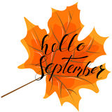 September hello, hand lettering, quotes.Modern motivation callig Royalty Free Stock Photos