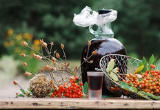 September im Garten Lizenzfreie Stockfotografie