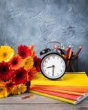 1. September Konzeptpostkarte, Lehrertag, zurück zu Schule oder College, Versorgungen, Wecker, ein Bündel von Gerbera Lizenzfreies Stockfoto