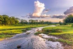 04 september, 2014 - Landschap van het Nationale Park van Chitwan, Nepal royalty-vrije stock afbeeldingen
