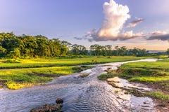 September 04, 2014 - landskap av den Chitwan nationalparken, Nepal arkivbild