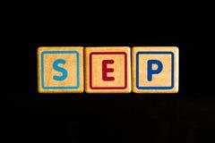 September på wood kubik på svart bakgrund arkivbild