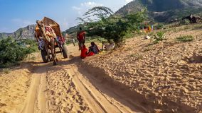 September 2015 pushkar Camel safari in thar desert, Rajasthan,India. September 2015. September 2015 when we were exploring at pushkar Camel safari in Thar desert stock images