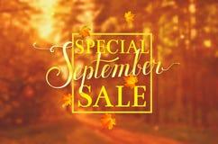 September sale. Vector banner. Stock Images