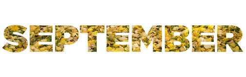 September. Sign september made of yellow leaves Stock Photos