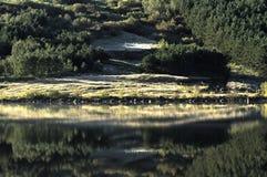 September-Sonnenaufgang in Island stockbilder
