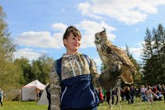 16 september, 2017, Tula, Rusland - Historisch Festival` Kulikovo Gebied `: een vrouw met een handschoen houdt een uil op uitgest stock fotografie