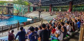 September 2018, Universal Studios, Singapore De toeristen die van de waterwereld genieten tonen zitting in de publieksgalerij tij royalty-vrije stock foto's