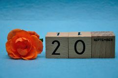 20 September on wooden blocks with an orange rose. On a blue background stock photos
