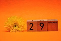 29 September on wooden blocks with a yellow daisy. On an orange background royalty free stock photos