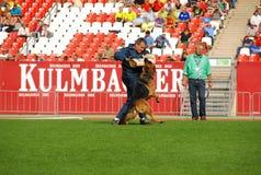 7 septembre 2014 épreuve d'aptitude fonctionnante de Nurnberg sur le plus grand Allemand elle Images libres de droits