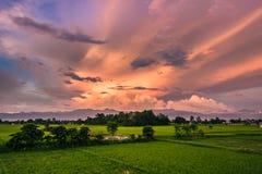 2 septembre 2014 - ciel crépusculaire dans Sauraha, Népal Photos stock