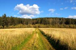 Septembre. La route au bois. Images libres de droits