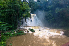 21 septembre 2014 : Le parc de Kuang Si Waterfalls, Laos Images stock