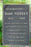 Sepulcro de Dian Fossey Imagenes de archivo