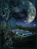 Sepulcro solitario en claro de luna Imagen de archivo