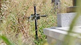 Sepulcros viejos del cementerio demasiado grandes para su edad con la hiedra almacen de video