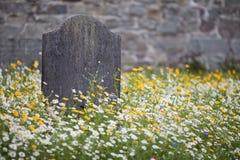 Sepultura cercada por flores selvagens fotografia de stock royalty free