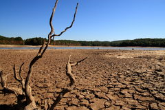 Sequía de Georgia foto de archivo