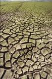 Sequía Fotos de archivo libres de regalías