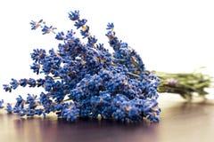 Seque a alfazema Imagens de Stock Royalty Free