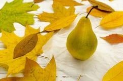 Seque as folhas de outono coloridas em torno da pera no papel de pergaminho branco na tabela de madeira do vintage fotos de stock