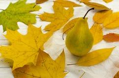 Seque as folhas de outono coloridas em torno da pera no papel de pergaminho branco no tabl de madeira do vintage imagens de stock royalty free