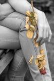 Seque color de rosa en la mano de la mujer Imagen de archivo libre de regalías