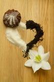 Seque el té negro y el azúcar en la forma de un corazón Imágenes de archivo libres de regalías