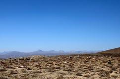 Seque a grama e arbustos queimados na paisagem Skardu Paquistão das planícies de Deosai imagens de stock
