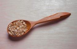 Seque la harina de avena rodada en cuchara de madera Foto de archivo libre de regalías