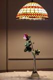 Seque la luz inferior color de rosa Foto de archivo libre de regalías